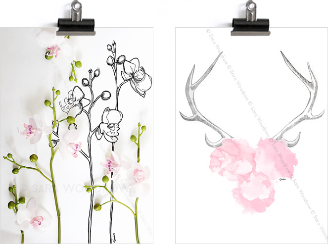 orchids_antlers_with_flowers_5341bd5cddf2b34fd97cc3f1